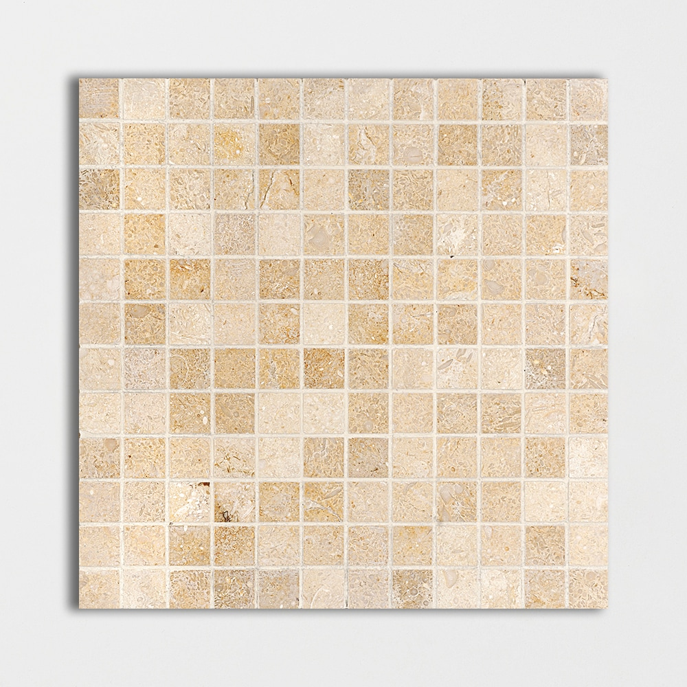 Seashell Honed 1x1 Limestone Mosaics 12x12