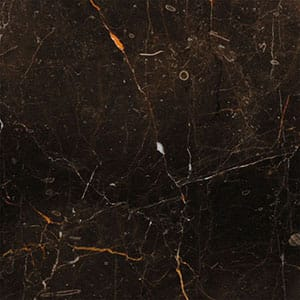 St-laurent Polished Marble Tiles 12x12