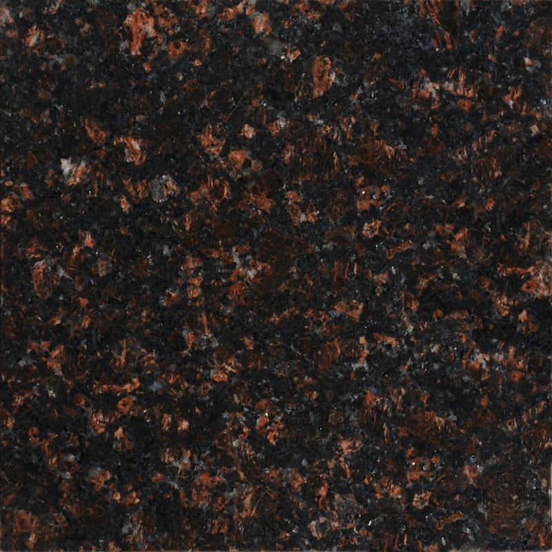Tan Brown Polished Granite Tiles 12x12
