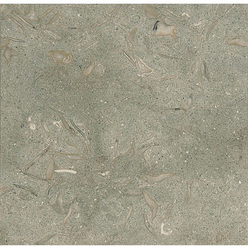 Olive Green Honed Limestone Tiles 12×12