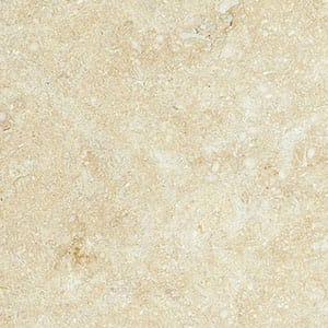 Seashell Honed Limestone Tiles 4x4