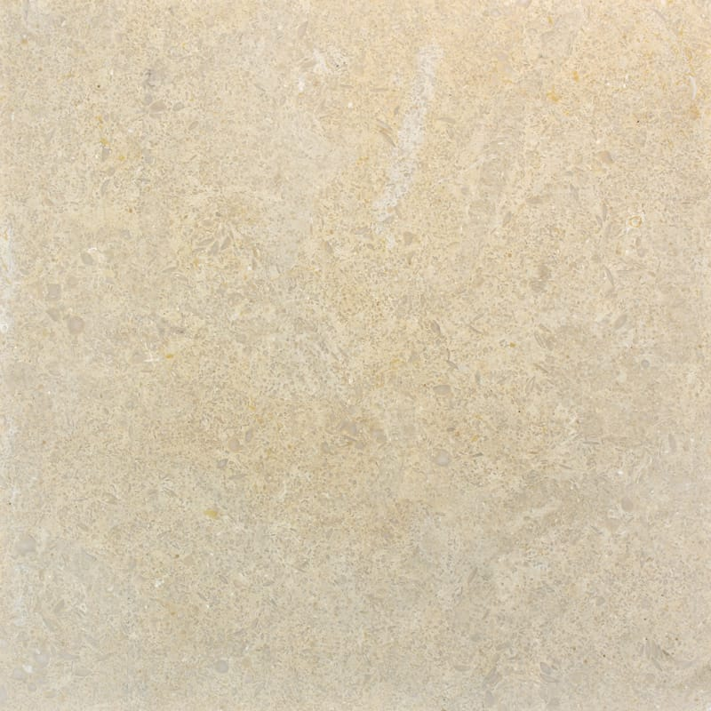 Seashell Honed Limestone Tiles 24x24