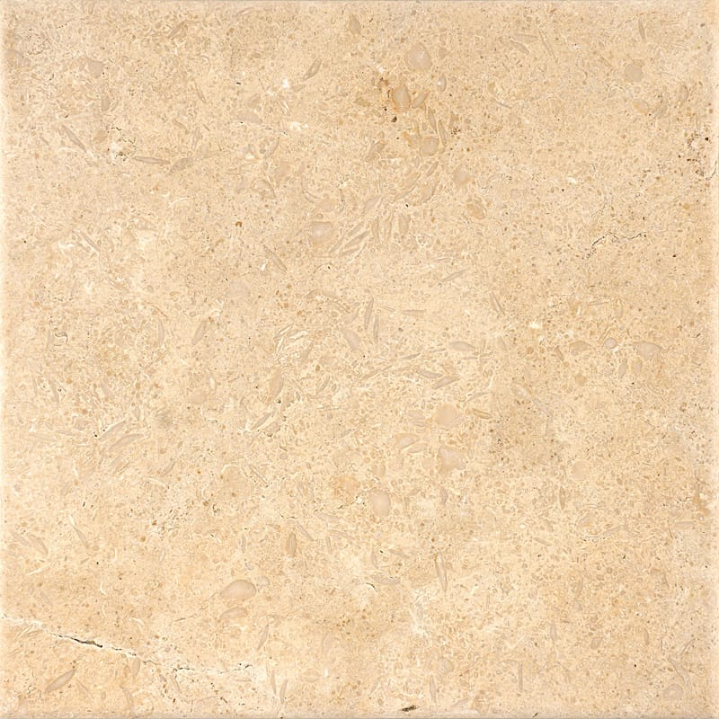 Seashell Antiqued Limestone Tiles