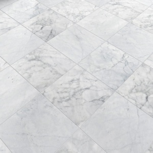 Avenza Honed Marble Tiles 12x12