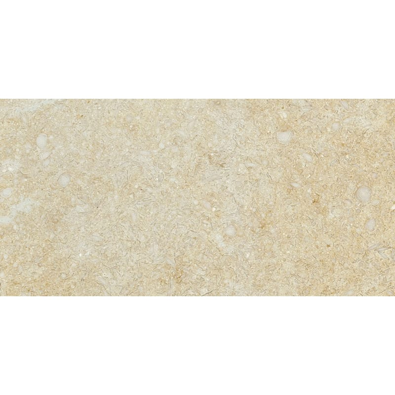 Seashell Honed Limestone Tiles 2 3/4x5 1/2