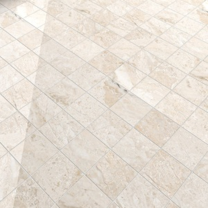 Diana Royal Polished Marble Tiles 5 1/2x5 1/2