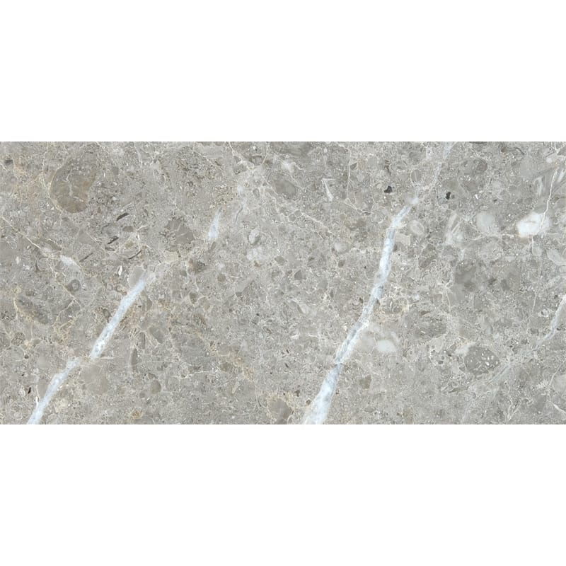 Silver Drop Polished Marble Tiles 12x24