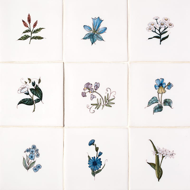 Friesland Flowers Poly On White Glazed Ceramic Tiles 5x5