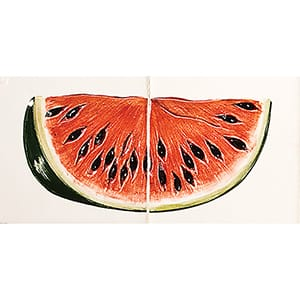 Watermelon Glossy Ceramic Panels 4x8