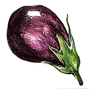 Vegetable Eggplant Glossy Ceramic Tiles 4x4