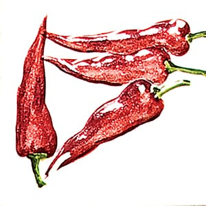 Vegetable Chilli Peppers A Glossy Ceramic Tiles 4x4
