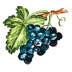Fruit Black Grapes Glossy Ceramic Tiles 4x4