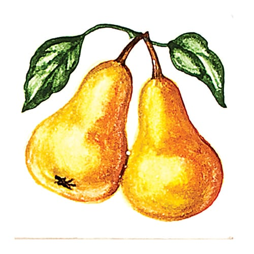 Fruit Pears Glossy Ceramic Tiles 4×4