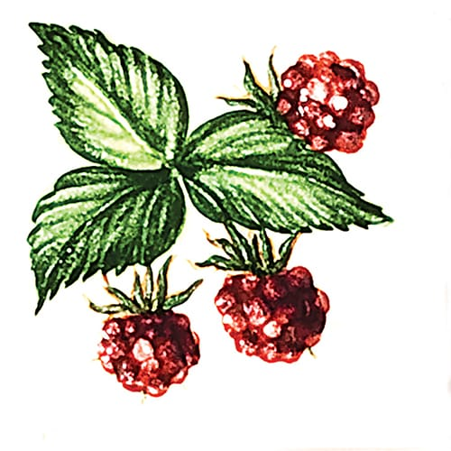 Fruit Raspberries B Glossy Ceramic Tiles 4×4