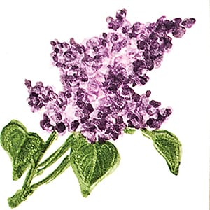 Flower Lavender Glossy Ceramic Tiles 4x4