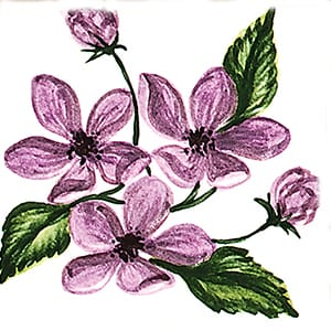 Flower Violets Glossy Ceramic Tiles 4x4