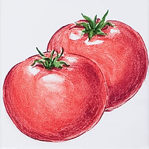 Vegetable Tomatoes B Glossy Ceramic Tiles 4x4