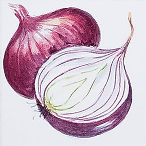 Vegetable Onions Glossy Ceramic Tiles 4x4