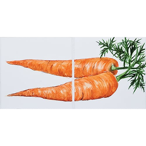 Vegetable Carrots Glossy Ceramic Tiles 4×8