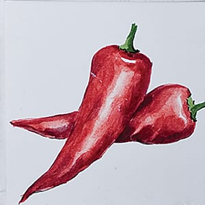Vegetable Chili Peppers B Glossy Ceramic Tiles 4x4