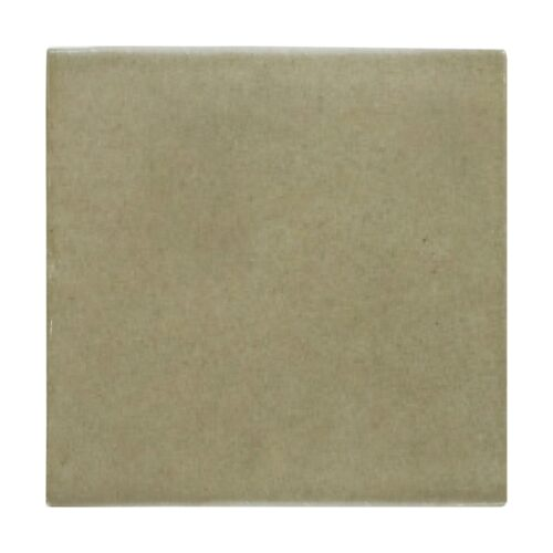 Willow Glossy Ceramic Tiles 6×6